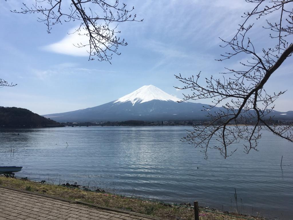 fuji mountain tokyo japan